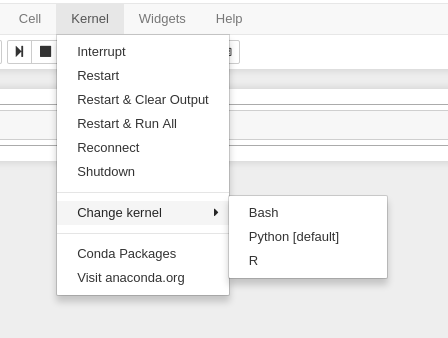 Change kernel button on Jupyter GUI